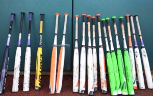2015 Easton FS1 Fastpitch Review