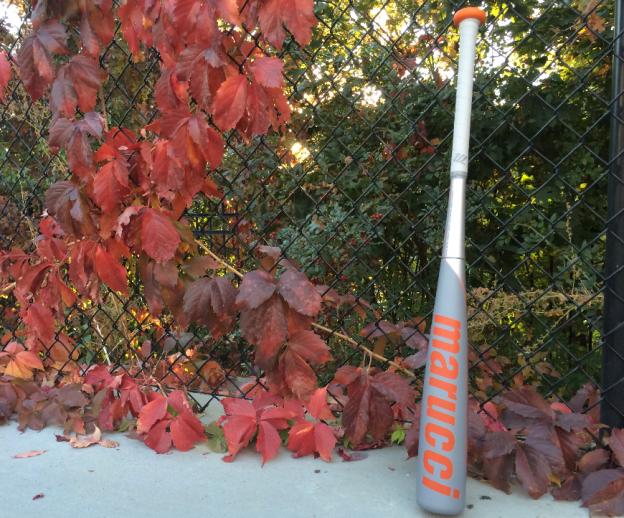 Best Fall Baseball Bat