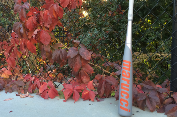 Best Fall Baseball Bat