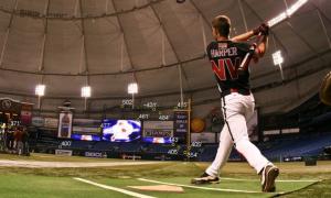 Bryce Harper's Bat