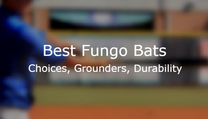 5 Best Fungo Bat Reviews