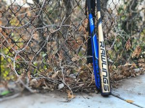 2019 Rawlings VELO Reviews