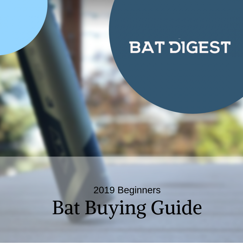 Bat Buying for Dummies