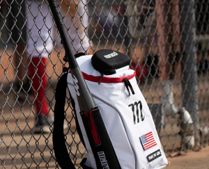 2020 Marucci Posey28 Metal Review